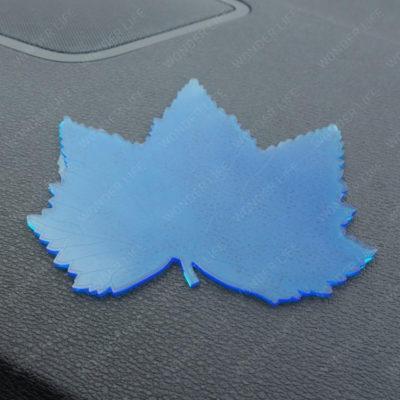 Клен синий